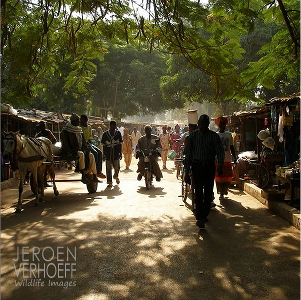 The Gambia, market, photo Jeroen Verhoeff