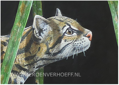 Ocelot painting detail Jeroen Verhoeff